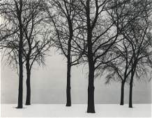 HARRY CALLAHAN - Chicago, 1950