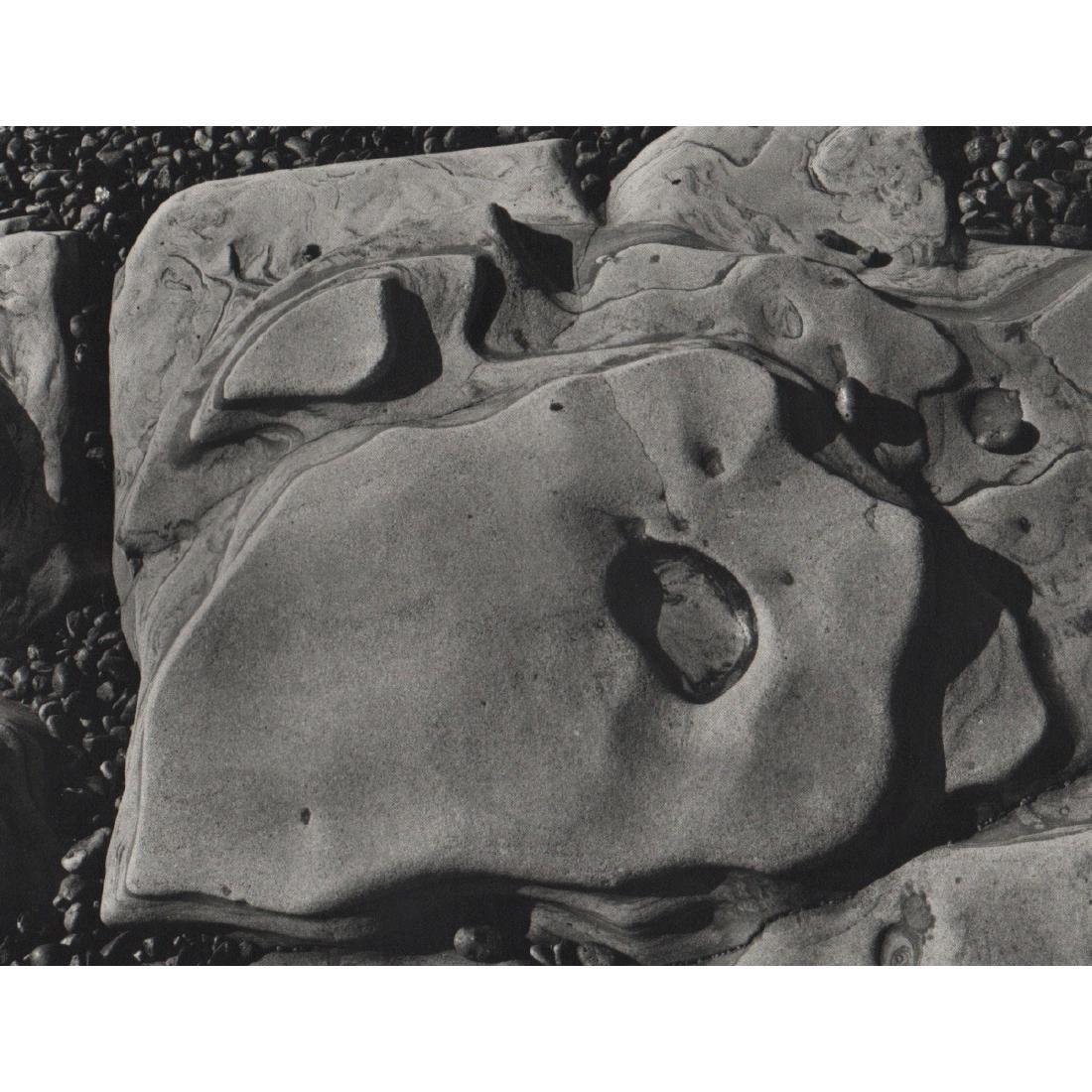 EDWARD WESTON - Point Lobos, 1930
