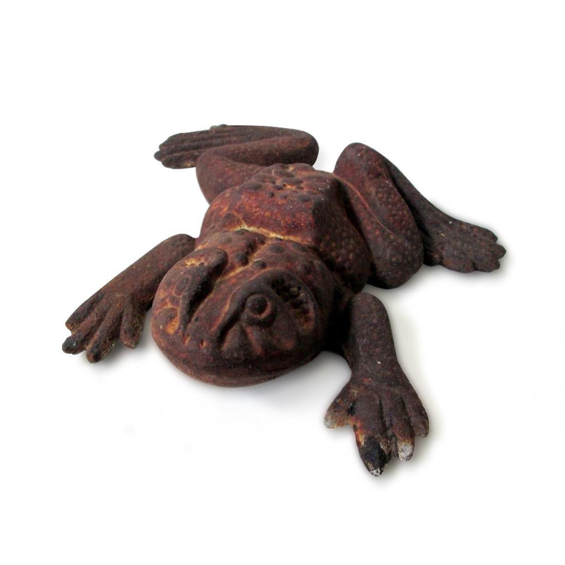 Bold Bullfrog Doorstop