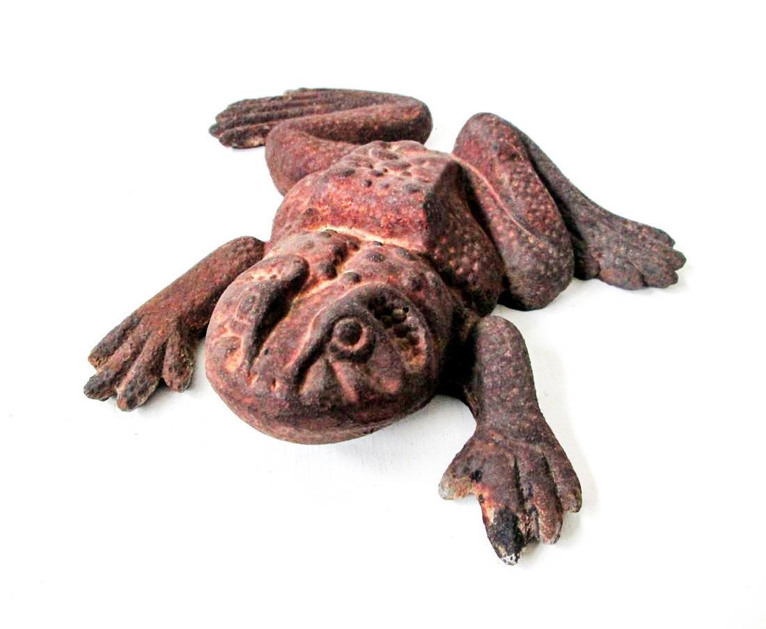 Bold Bullfrog Doorstop - 3
