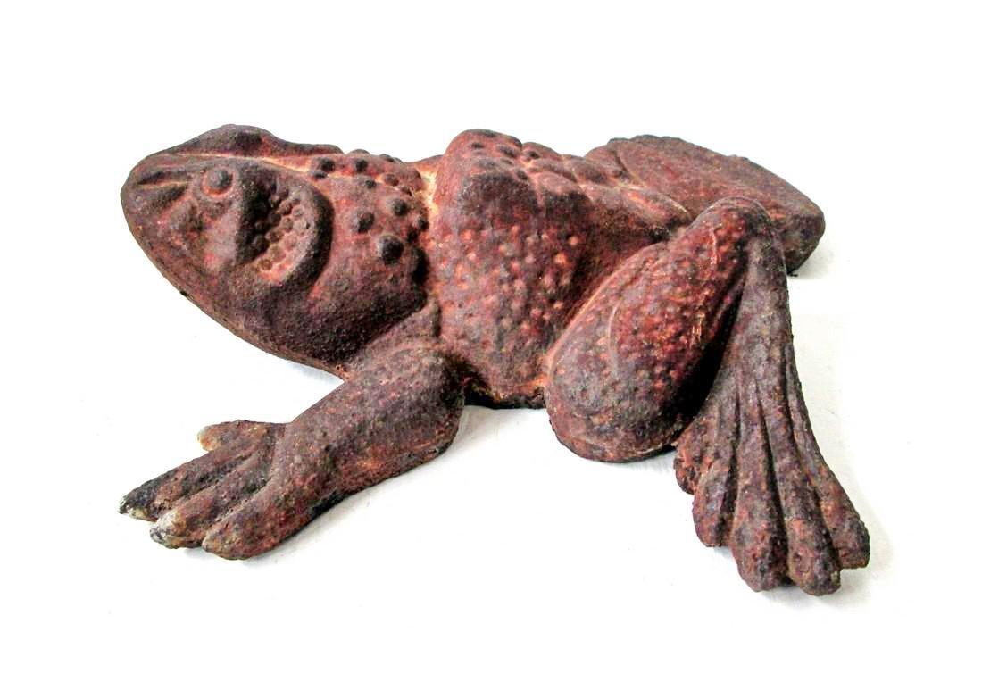 Bold Bullfrog Doorstop - 4