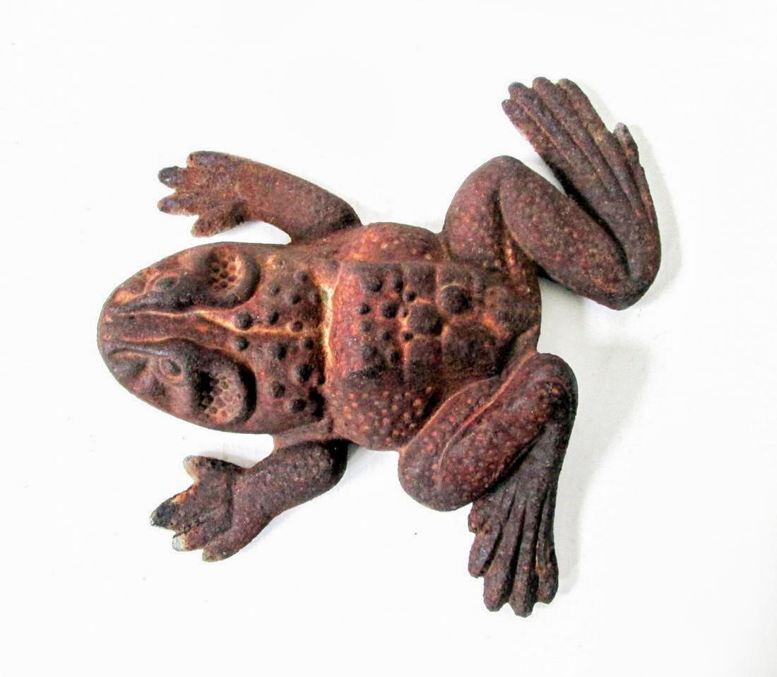 Bold Bullfrog Doorstop - 8
