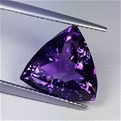 """8.88 ct """"Collective Gem"""" Amazing Triangle Cut Natural"""