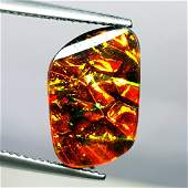 472 ct Mexican Fire Opal Doublet