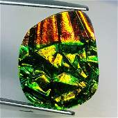 740 ct Mexican Fire Opal Doublet