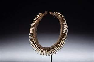 Old New Guinea Dog Tooth Headband