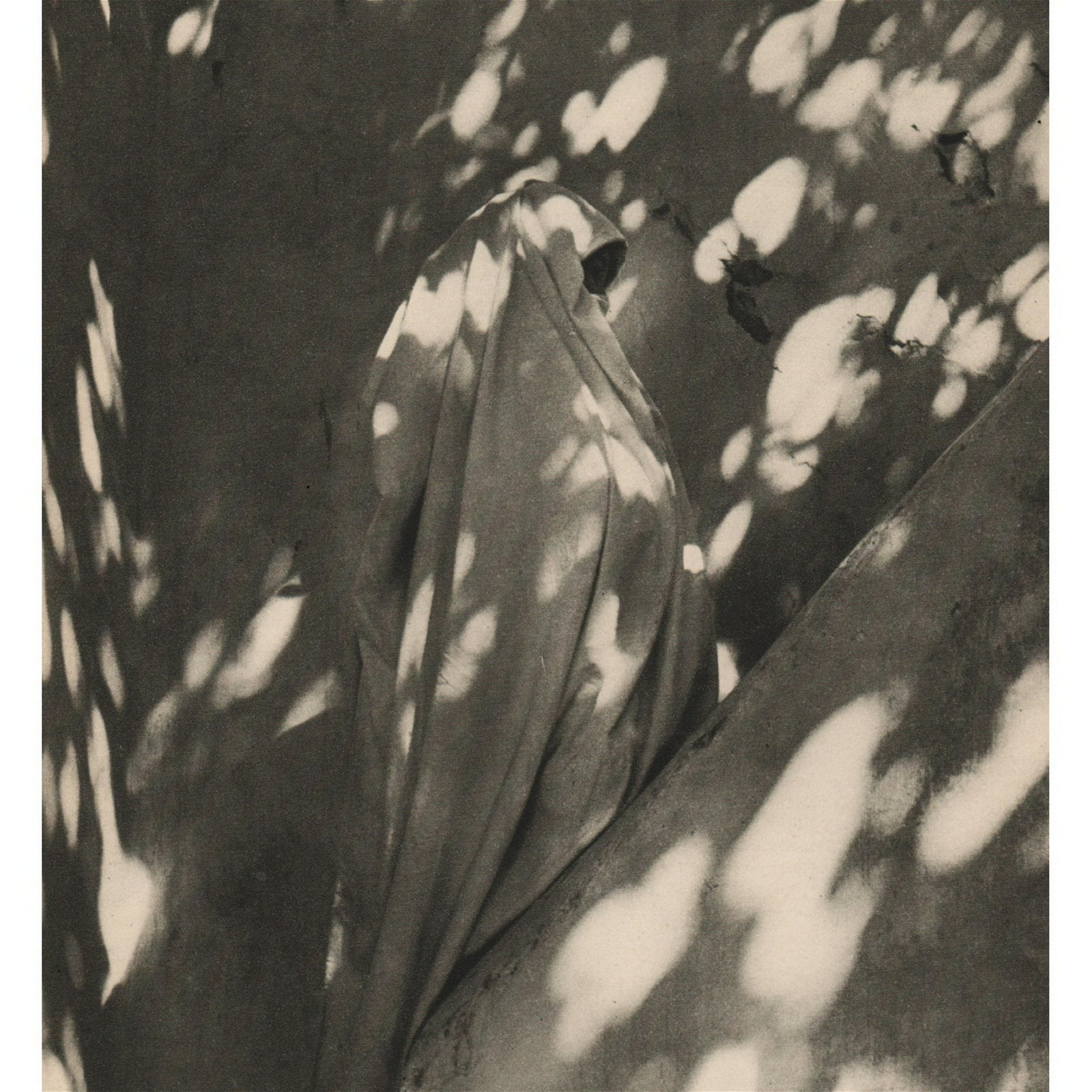 CECIL BEATON - Moroccan Shadow