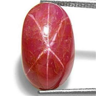 547Carat Majestic Unheated Pinkish Red Star Ruby from