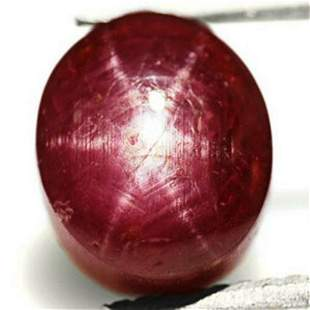 493Carat Maroon Red Star Ruby from India