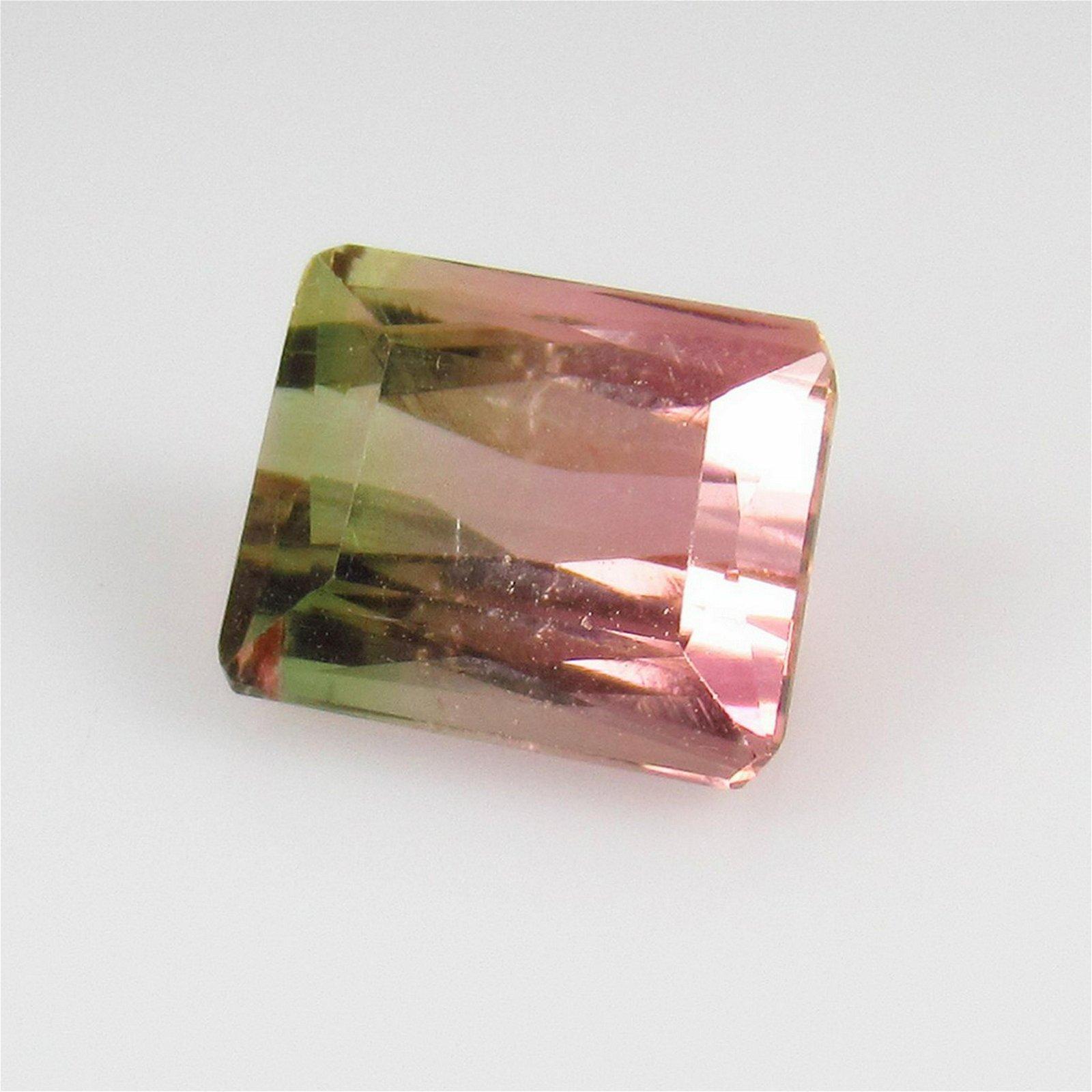 2.49 Ctw Natural Bi-Color Tourmaline Octagon Cut