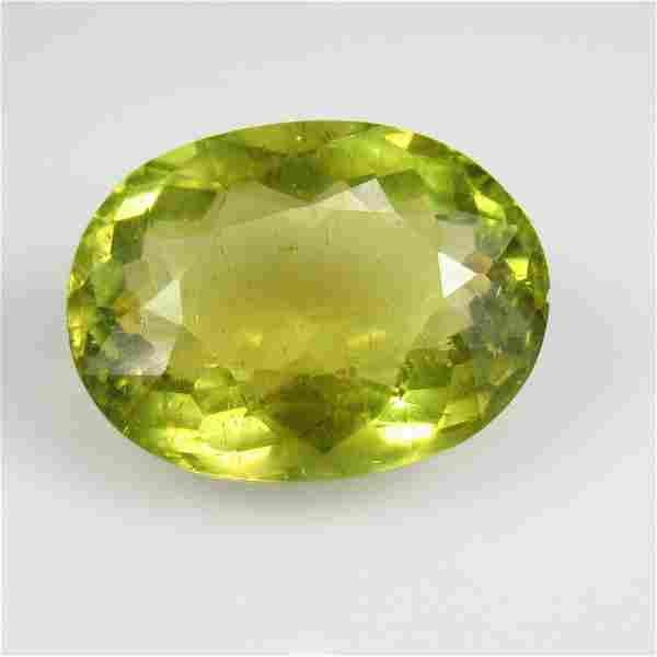 17.88 Ctw Natural Yellowish Green Apatite 19.5X14.5 mm