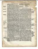 1559 English Law Leaf