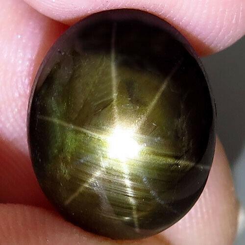 10,20 ct Natural Black Star Sapphire 6 Rays Star