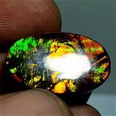 Australian Doublet Opal 11.55 ct