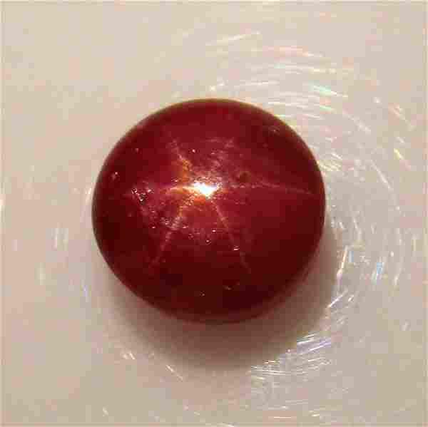 634 Ct Genuine Six Line Star Ruby Round Cab