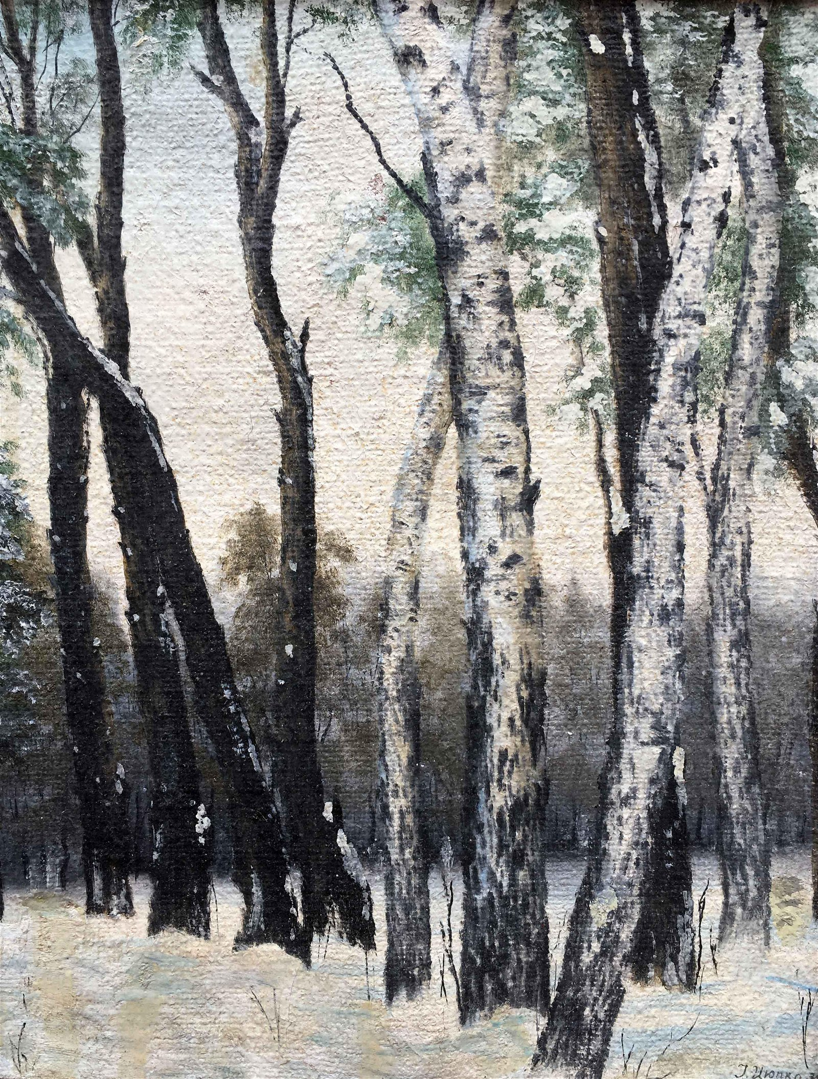 Oil painting winter birch Ivan Kirillovich Zyupka