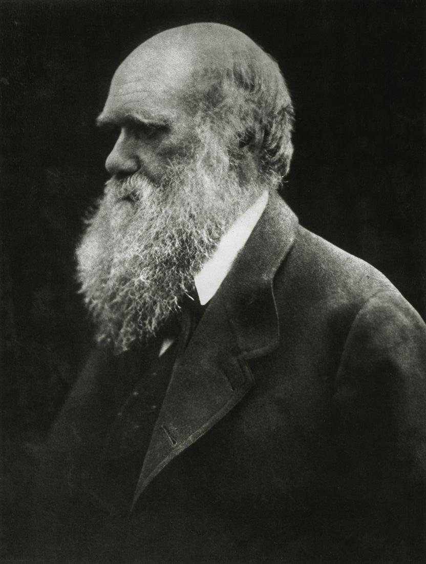 JULIA MARGARET CAMERON - Charles Darwin, 1868