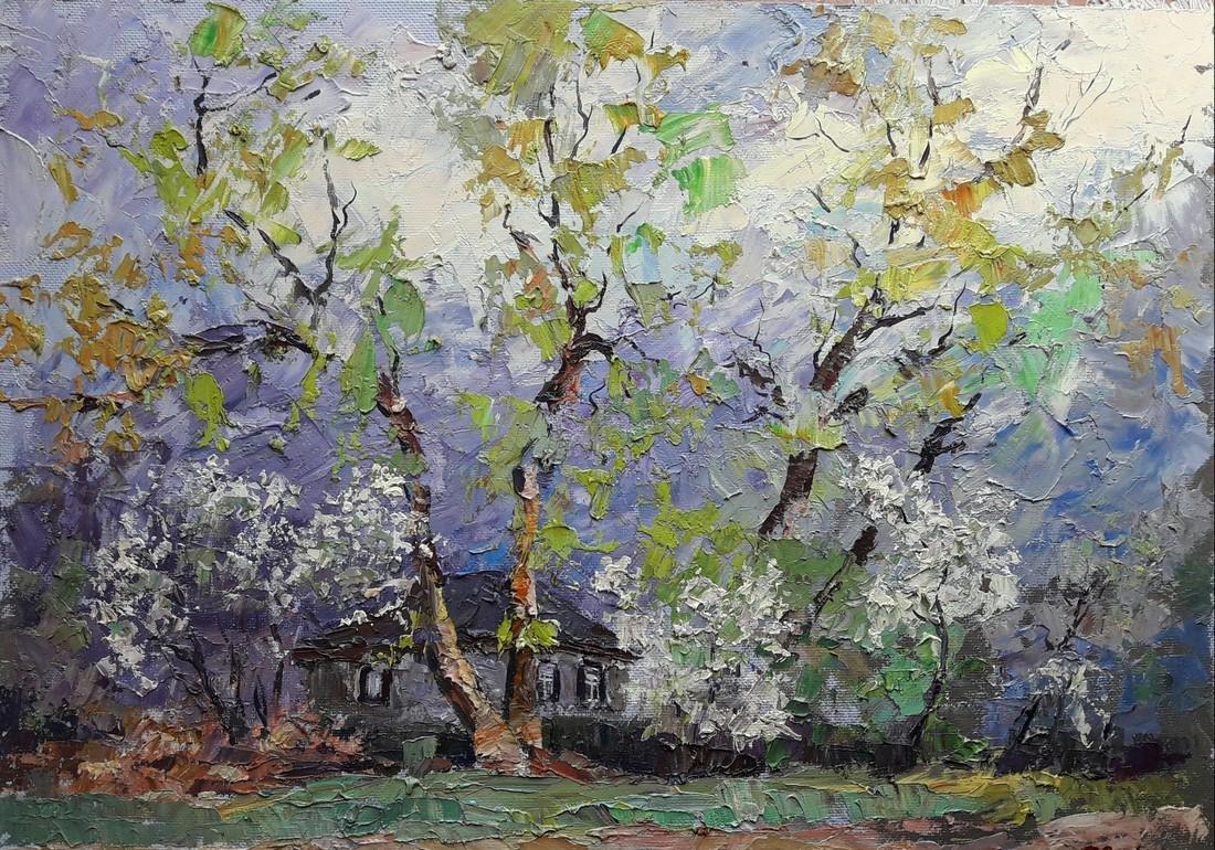 Oil painting Flowering cherry near the yard /  Serdyuk
