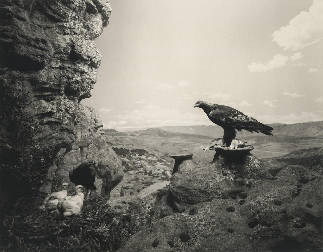 HIROSHI SUGIMOTO - Golden Eagle, 1994