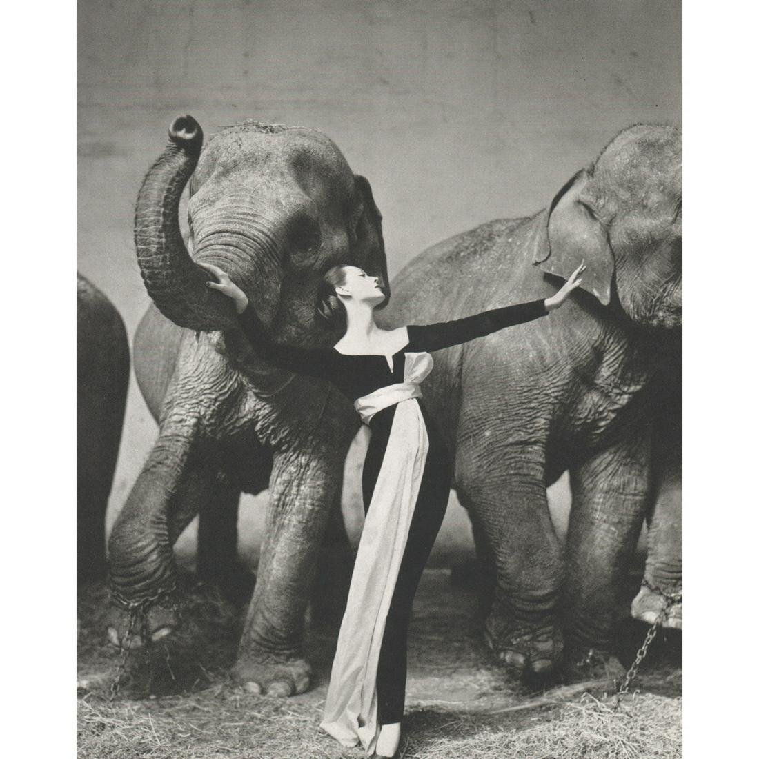 RICHARD AVEDON - Dovima with Elephants, Paris 1955