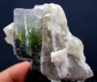Tourmaline Specimen Tourmaline Crystal with on Quartz