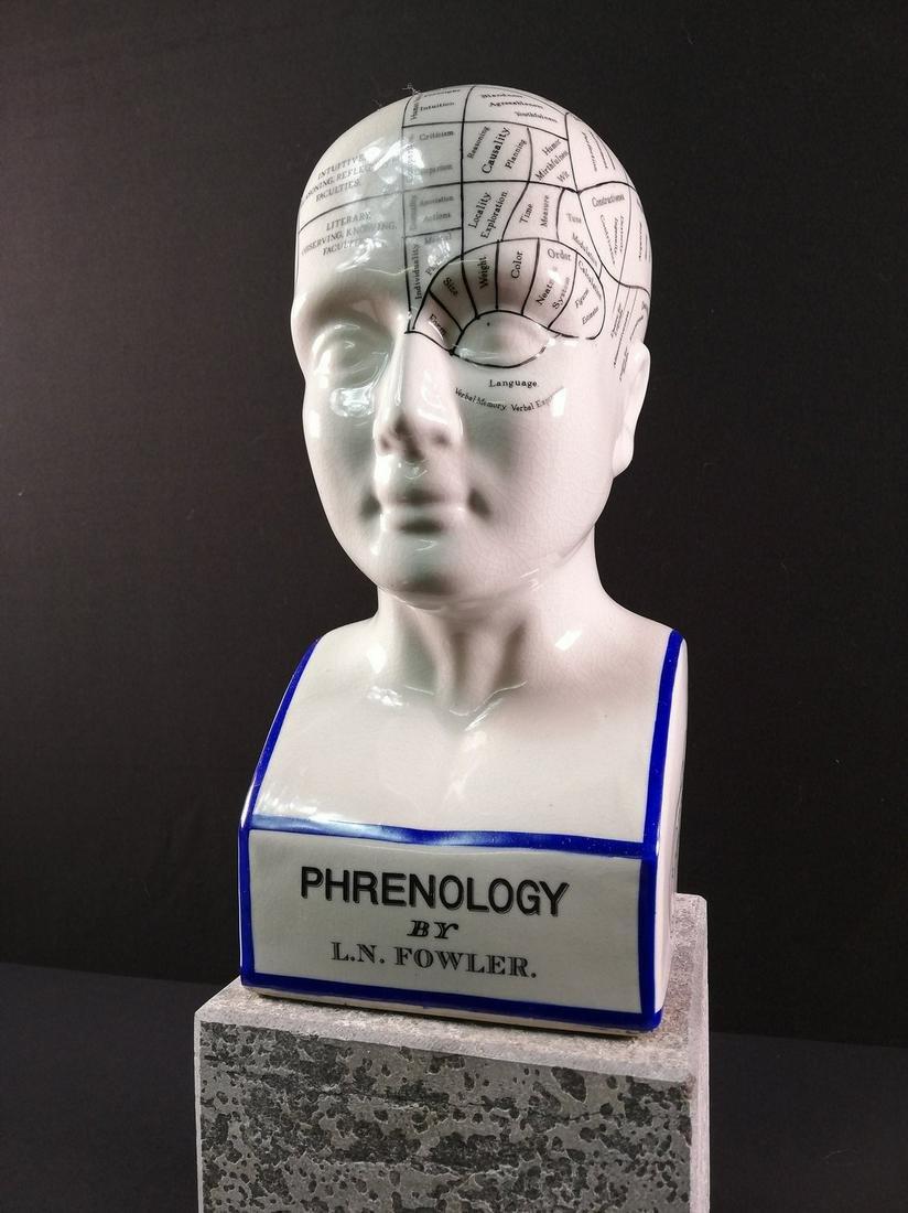 A porcelain medical bust - phrenology head