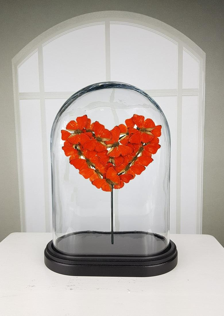 """""""Heart of Love"""" Butterfly Artwork under glass dome"""