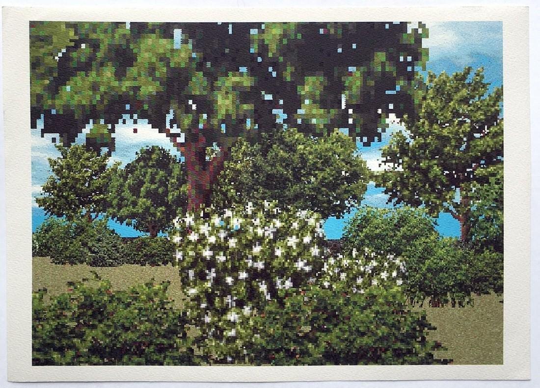 Regula Dettwiler: Baume(Trees) in Summer
