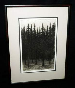 US Frame Aquatint Print Thick Pine Forest