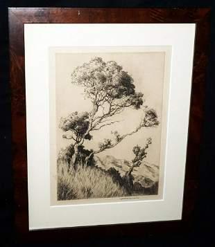 Hawaii Frame Print Lehua Huc M Luquiens