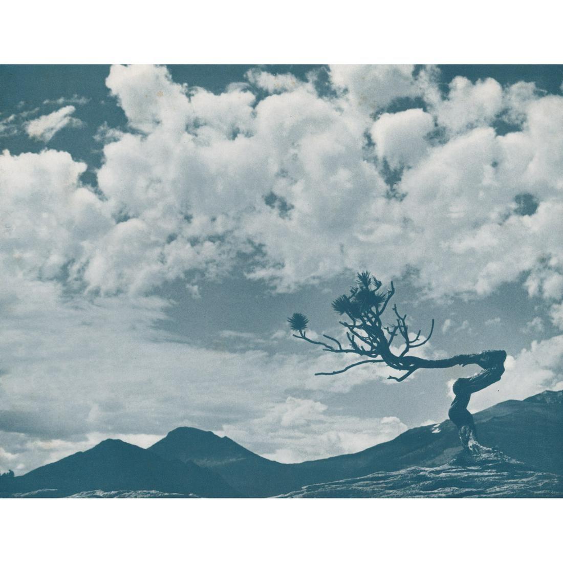 FRED G. KORTH - Lonesome Pine