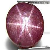 24.49-Carat Large Purplish Red Star Ruby from India