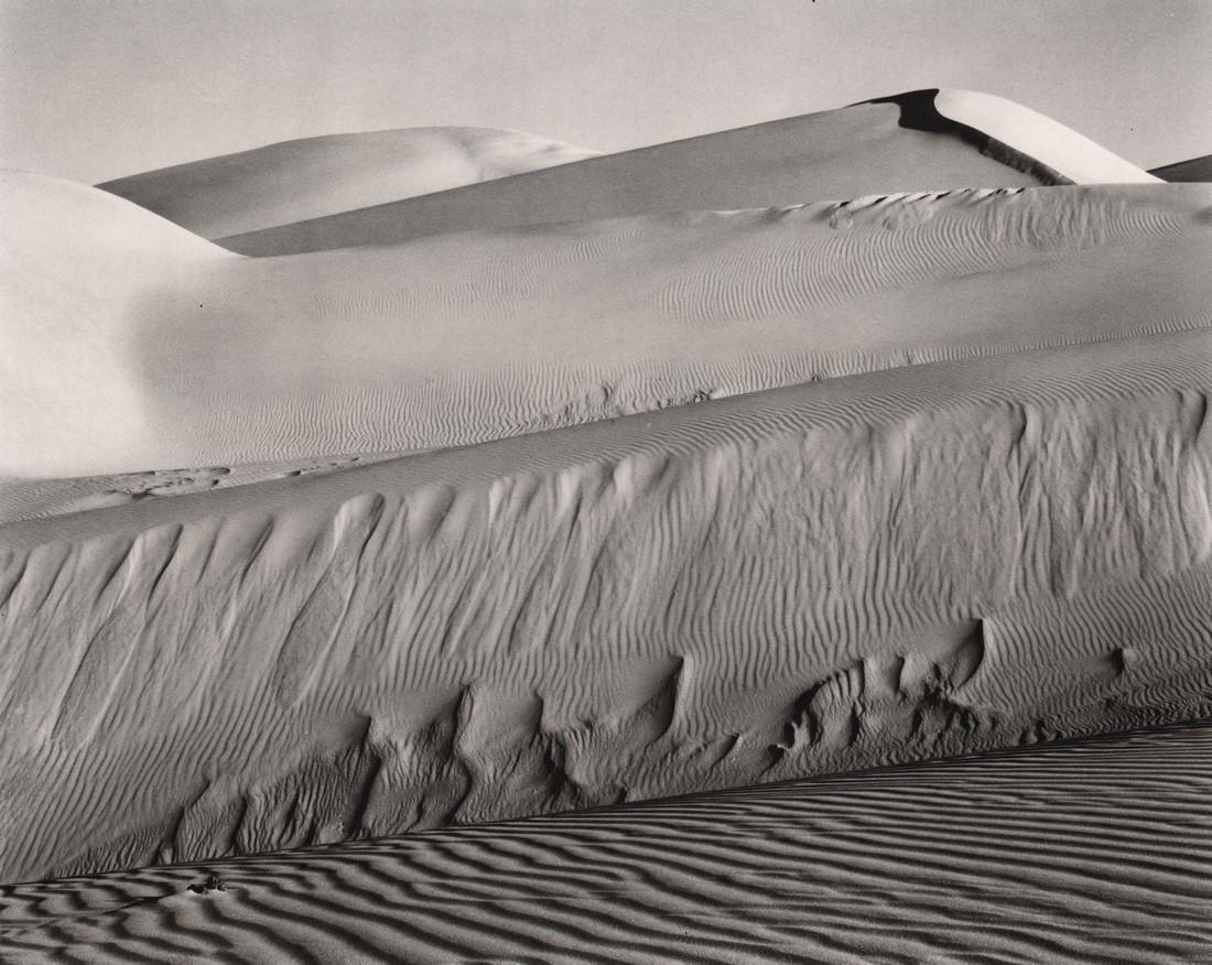 EDWARD WESTON - Dunes, Oceano