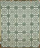 40s Green & White Mariner's Compass Sunflower Quilt