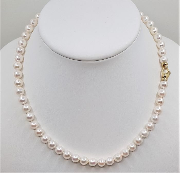 14 kt. Yellow Gold - Top Grade 7x7.5mm Akoya Pearls -