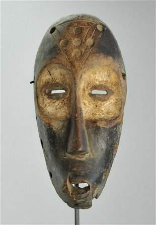 Large idimu LEGA Bwami Cult Wood Mask Congo DRC African