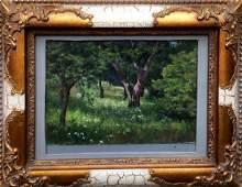 Oil painting Old garden Tsyupka Ivan Kirillovich