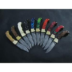 10 pcs SET chef damascus steel knife horn bone knives