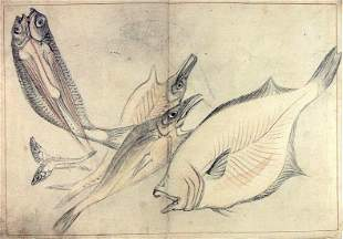 Anonymous: A Shoal of Fishes - Japanese ink drawing