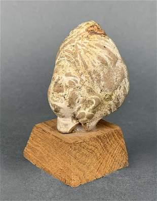 India Harrapa Head Excavated