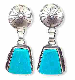 Abstract Shaped Kingman Turquoise Post Earrings -