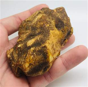 Unique and Marvellous Raw Amber Stone
