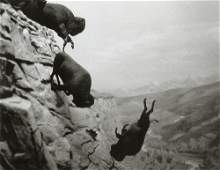 DAVID WOJNAROWICZ - Bad Moon Rising, 1989