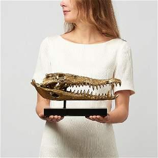 Fine bronze statue of a crocodile skull
