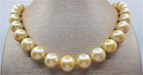 Large 12x16mm Champagne Golden South Sea Pearls Gold -