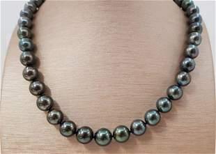 10x12mm Round Black Tahitian Pearls Tahitian pearls -