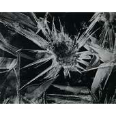 BRETT WESTON - Ice Form