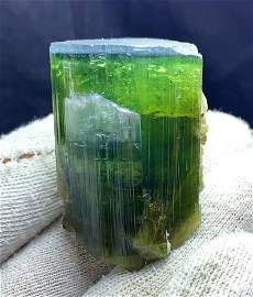 Blue Cap Bi-Color Tourmaline Crystal Specimen From