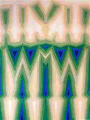 Tauba Auerbach-Fold Slice Topo II
