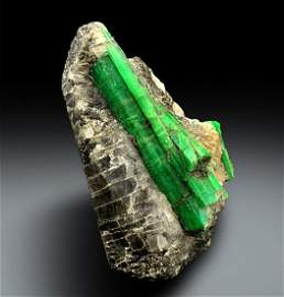 Emerald Specimen , Natural Emerald Crystal on Matrix